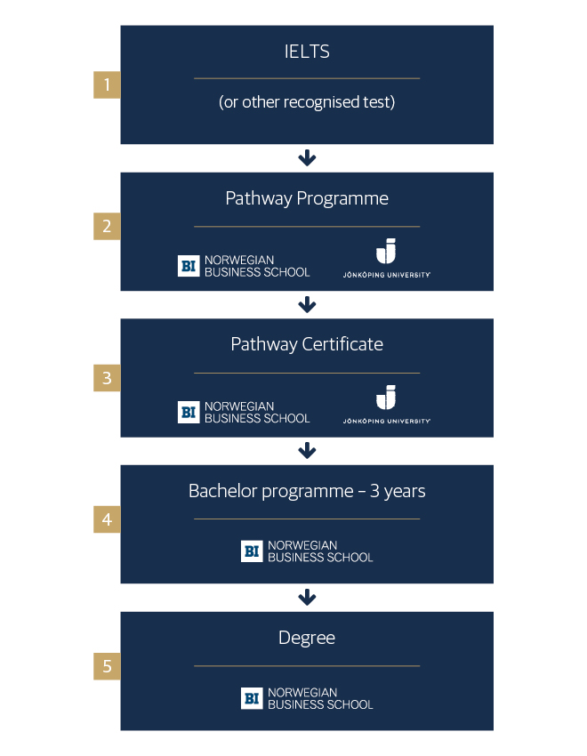 Progression through the Pathway Programme to receiving a Bachelor degree at BI